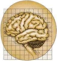 Mózg i Magia